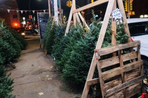 christmas-tree-vendors-new-york-city